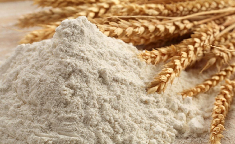 03/06 - Interpretação de laudo de farinha de trigo ( 09 hs )